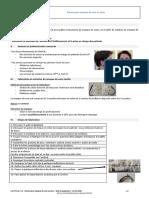 patron masque.pdf.pdf.pdf.pdf