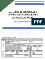 MATRIZ DE COMPETENCIAS Y CAPACIDADES CURRICULARES