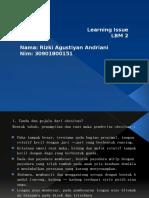 Learning Issue lbm 2 RIZKI