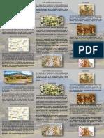 Triptico Teotihuacan.pdf