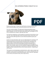 Dog Behavorial Problems and Obedience Problems in New York