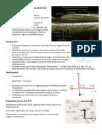Principio físico y tecnologías de la OCT.docx