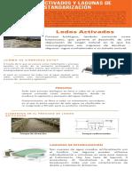 10. Lodos activados y lagunas de estabilización
