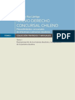 NUEVO DERECHO CONCURSAL - GONZALO RUZ.pdf