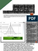 Piramides de población.pptx