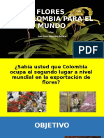 FLORES DE COLOMBIA PARA EL MUNDO