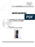 MBASICO001 _ Diseño básico del reactor HHO