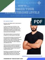 t-optimization-blueprint optimiza tu testosterona facilmente