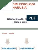 ANATOMI FISIOLOGI MANUSIA DIII new.pptx