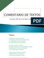 A Dafne COMPLEMENTO.pdf