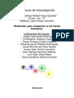 Proyecto de Investigación (2)