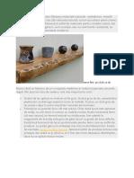 Tipuri de tratamente pentru lemn.doc