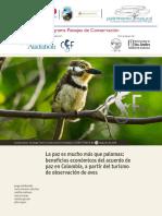 La paz es más q palomas.pdf