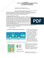 Taller ADN y ARN.pdf