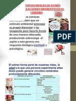 expo neuroc limber.pdf