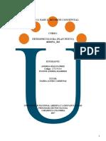 trabajo individual Unidad 2 Fase 2  Revisión concept.docx