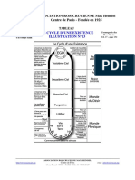 cycle existence.pdf