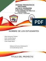 Perfil de proyecto de carrera práctica profesional ii