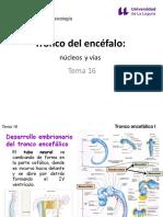 Temas 16-19 - Tronco encefálico