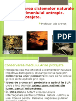 Ariile protejate, cl.12oft Office PowerPoint