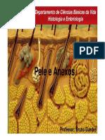 Pele e Anexos