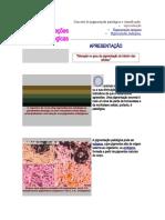 Pigmentações patológicas (1)
