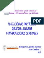 F-06 Algunas Consideraciones de la Flotación de Partículas Gruesas.pdf