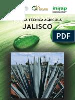 Agenda Técnica Jalisco