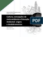 Aula 1 Cultura, concepções de meio ambiente e Educação Ambiental (1).pdf