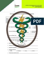 ficha-avaliac3a7c3a3o-de-fisioterapia-dermato-funcional-200-1