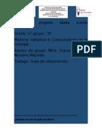 guía de observación.docx