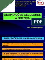 AULA 2_Adaptacoes-Celulares-1