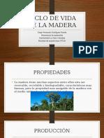 CICLO DE VIDA DE LA MADERA.pptx