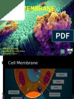5.Cell Membrane.pptx