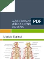 Clase 7 vascularizacion medula espinal y encefalo.pdf