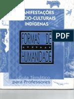 Manifestacoes Socio-Culturais indigenas - Formas de Humanidade.pdf