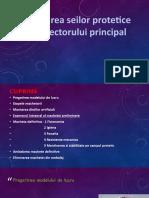 Machetarea seilor protetice si a conectorului principal.pptx
