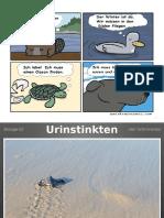 Biovortrag-Urinstinkte.pptx