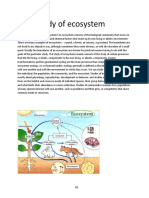 Field study of ecosystem.docx