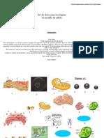 Aula Prática Lúdicade Introduçao à Biologia Celular e Histologia - Parte 2 de 4 - Kit do aluno
