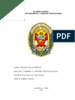 El Habeas Corpus. Derecho fundamental y garantía constitucional trabajo