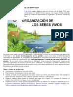 Tema 3 Ciclo III P4 Niveles de  organizacion de seres vivos.docx