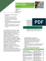 Trigliceridos-y-Colesterol_Cual-es-la-diferencia.docx