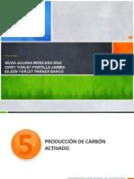 carbon activado .pptx