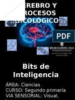 Bits de Inteligencia.pptx