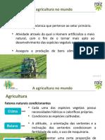 Agricultura - fatores e tipos PP1