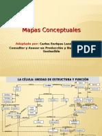 EJEMPLO DE MAPA CONCEPTUAL.ppt