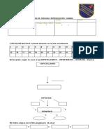 EXAMEN 2 MEDIO BIOLOGIA.docx