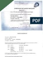 17. DALF C1.pdf