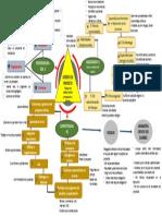 mapa conceptual - un gerente de proyecto